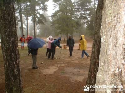 Torcas y Lagunas de cuenca; rutas senderismo sierra de madrid